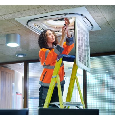 Ladder and Stepladder training